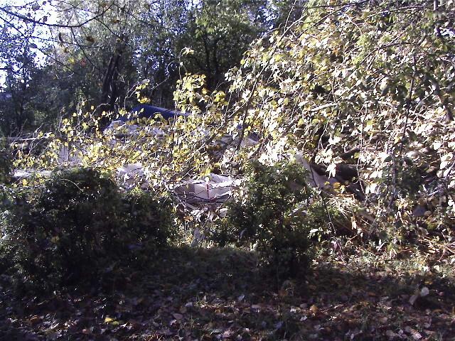 Mother Nature has Dealt Us a Devastating Blow! 7-long10