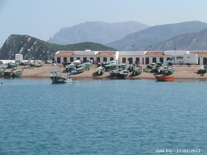 [Maroc Camp/Dernières nouvelles] camping calla iris 2012ma11