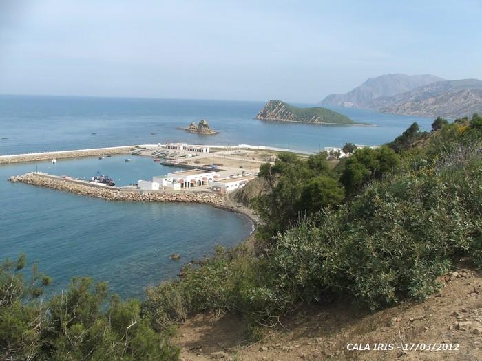 [Maroc Camp/Dernières nouvelles] camping calla iris 2012ma13