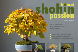 shohin passion  Bonsai14