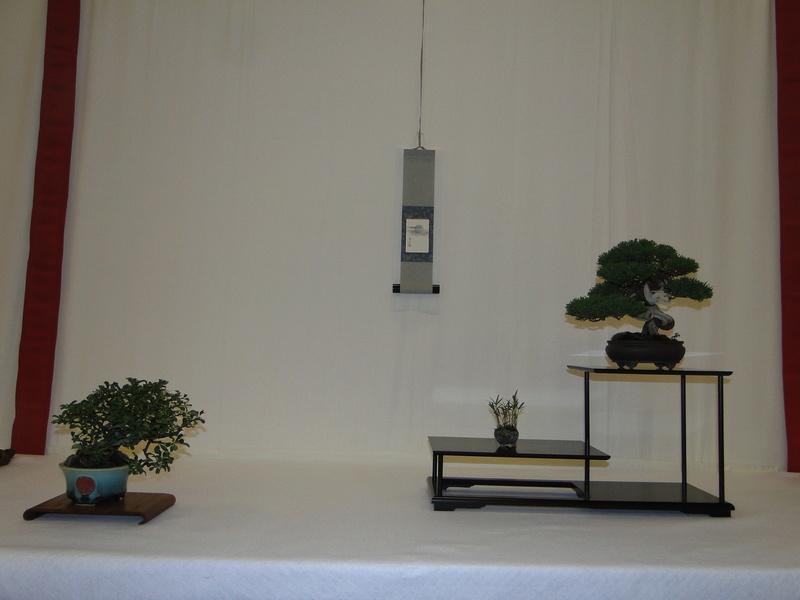 Salon national du bonsaï - Parc Oriental de Maulévrier 10 et 11 septembre  Dsc09818