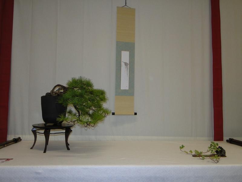 Salon national du bonsaï - Parc Oriental de Maulévrier 10 et 11 septembre  Dsc09820