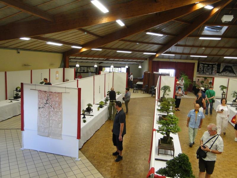Salon national du bonsaï - Parc Oriental de Maulévrier 10 et 11 septembre  - Page 2 Dsc09913