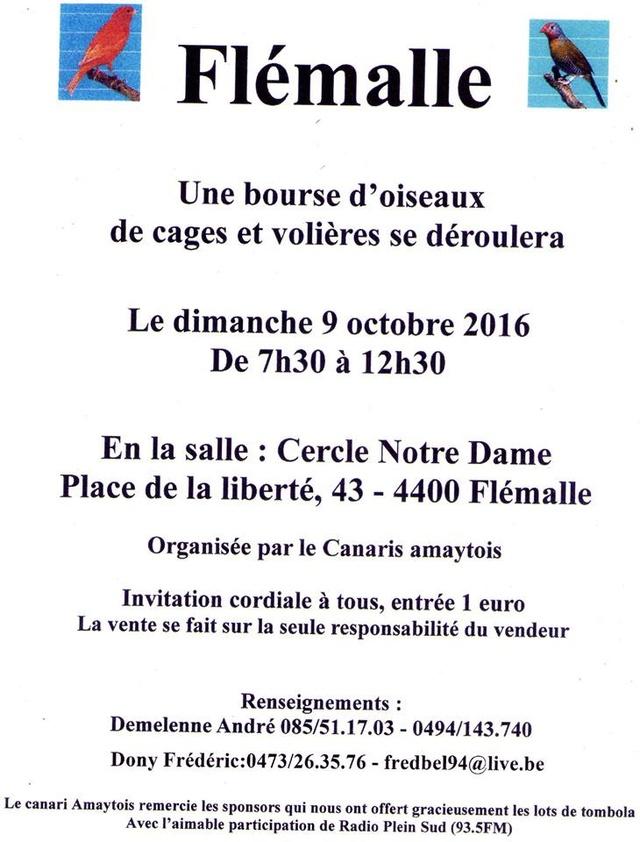 bourses d'oiseaux a flemalle - Page 2 14516410