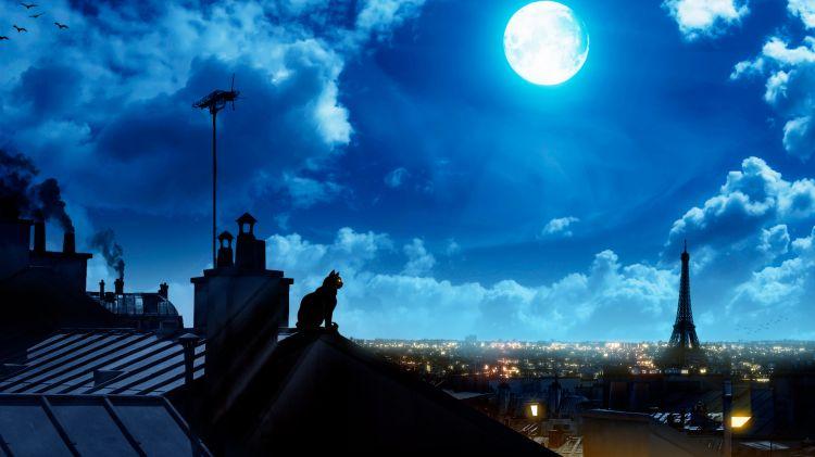 bonzour bonne zournée et bonne nuit notre ti nid za nous - Page 2 9464c510