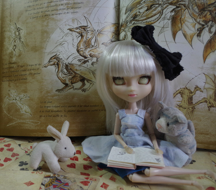 Ikio in Wonderland Imgp7415