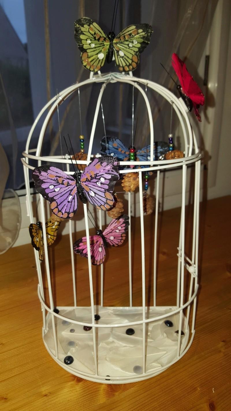La Cage aux Rêves 20160916