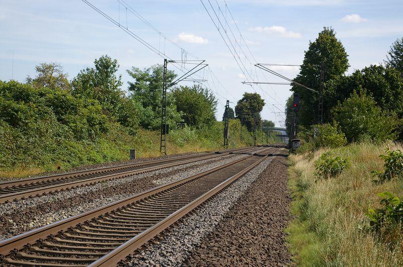 Was die Züge so bewegt ... - Seite 5 Imgp1711