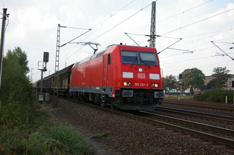Was die Züge so bewegt ... - Seite 6 Imgp1820