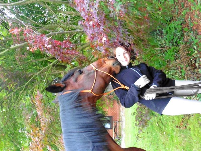 CONCOURS PHOTOS : le cheval et l'automne Sanche35