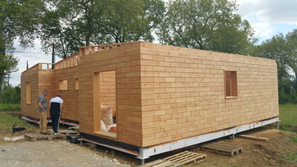 Des briques en bois 1117