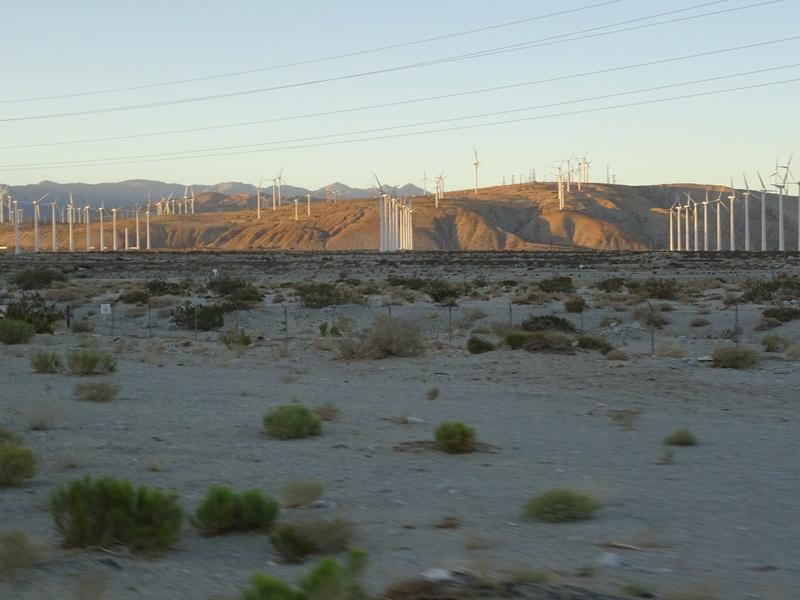quelques photos prises dans le desert Dsc05310