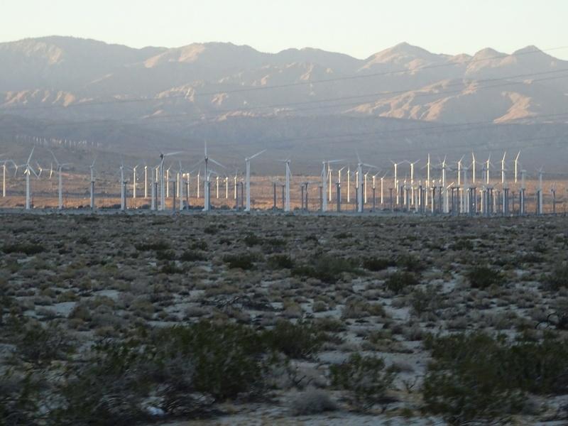 quelques photos prises dans le desert Dsc05311