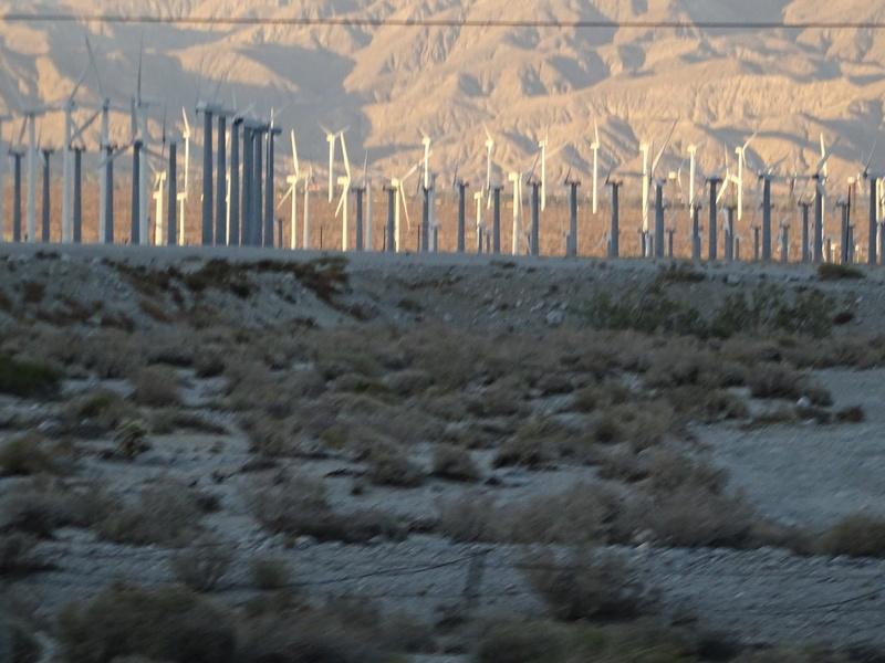 quelques photos prises dans le desert Dsc05312