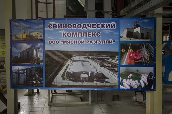 Курс на импортозамещение в Смоленском регионе - Страница 2 133