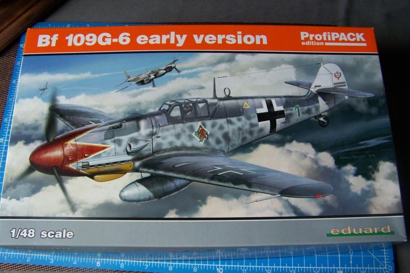 Bf-109 G6 Ufz René Darbois Juillet 44 (Eduard 1/48) 100_0067