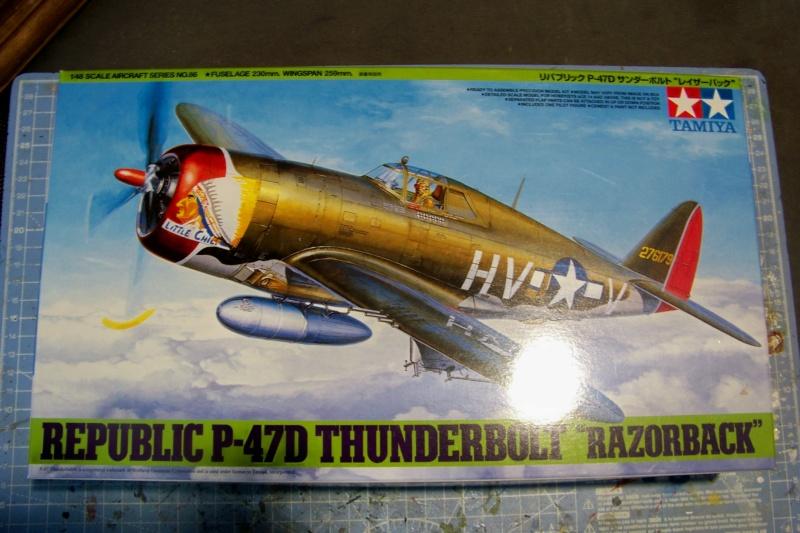 Republic P-47 D22 50th FG 81st FS Catz(ALG A10) Juin 44 ( Tamiya 1/48 ) 100_0135