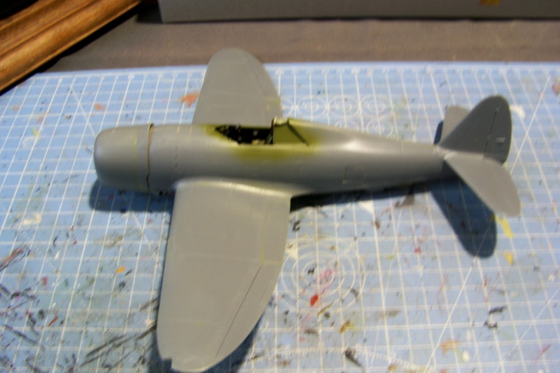 Republic P-47 D22 50th FG 81st FS Catz(ALG A10) Juin 44 ( Tamiya 1/48 ) 100_0138