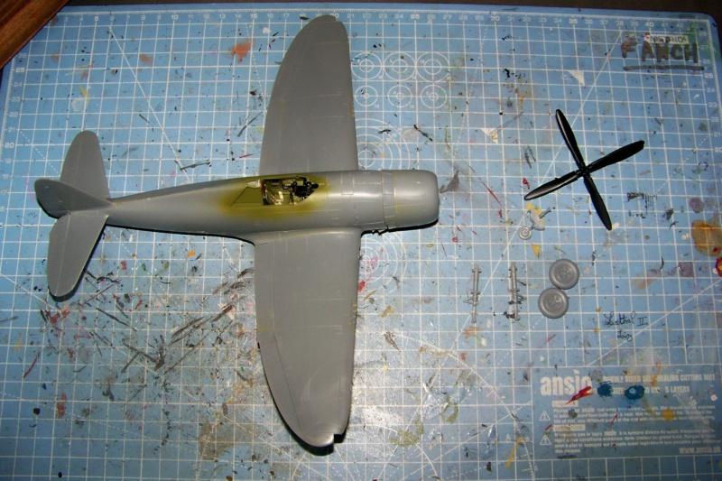 Republic P-47 D22 50th FG 81st FS Catz(ALG A10) Juin 44 ( Tamiya 1/48 ) 100_0144