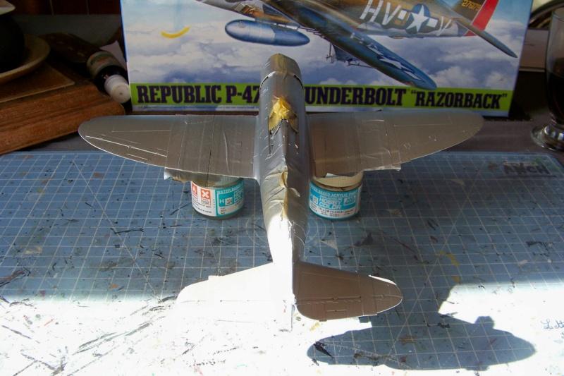 Republic P-47 D22 50th FG 81st FS Catz(ALG A10) Juin 44 ( Tamiya 1/48 ) 100_0154