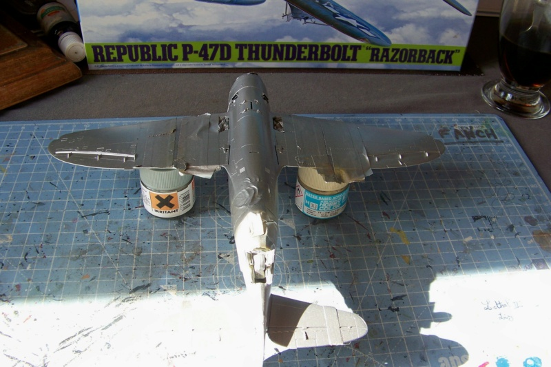 Republic P-47 D22 50th FG 81st FS Catz(ALG A10) Juin 44 ( Tamiya 1/48 ) 100_0155