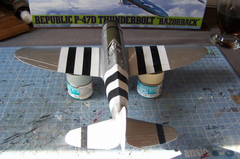 Republic P-47 D22 50th FG 81st FS Catz(ALG A10) Juin 44 ( Tamiya 1/48 ) 100_0158