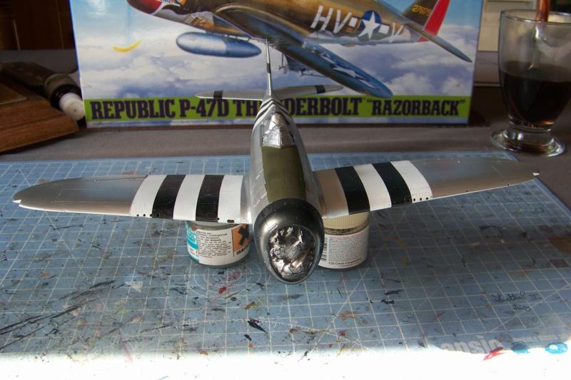 Republic P-47 D22 50th FG 81st FS Catz(ALG A10) Juin 44 ( Tamiya 1/48 ) 100_0159