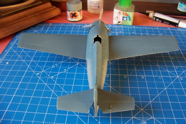 G-36B de l' AC1, Aout 40 Hobby Boss 1/48 ( F4F3 late) FINI 100_4630