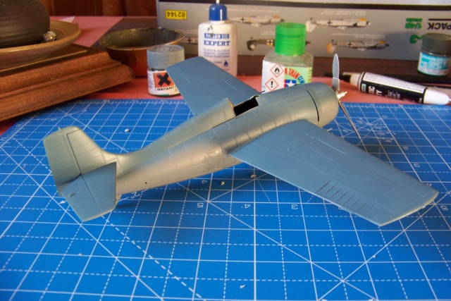 G-36B de l' AC1, Aout 40 Hobby Boss 1/48 ( F4F3 late) FINI 100_4632