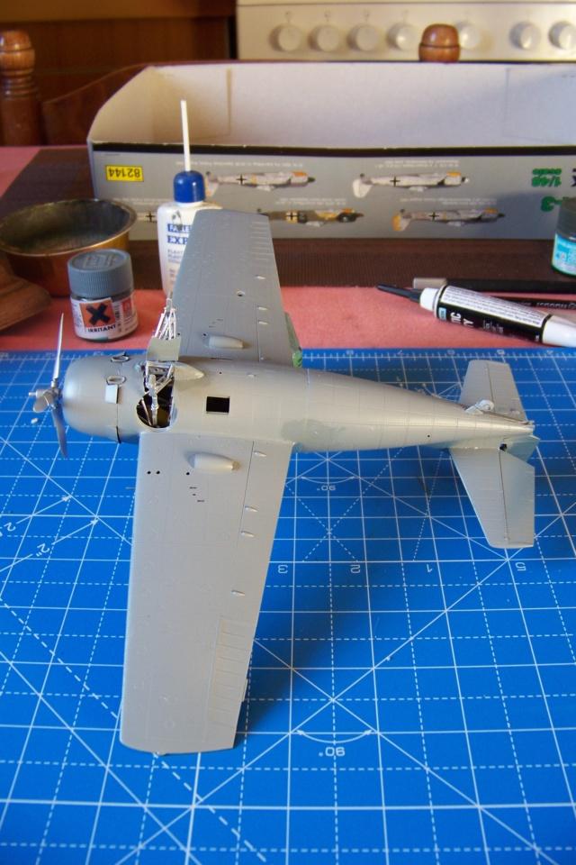G-36B de l' AC1, Aout 40 Hobby Boss 1/48 ( F4F3 late) FINI 100_4633