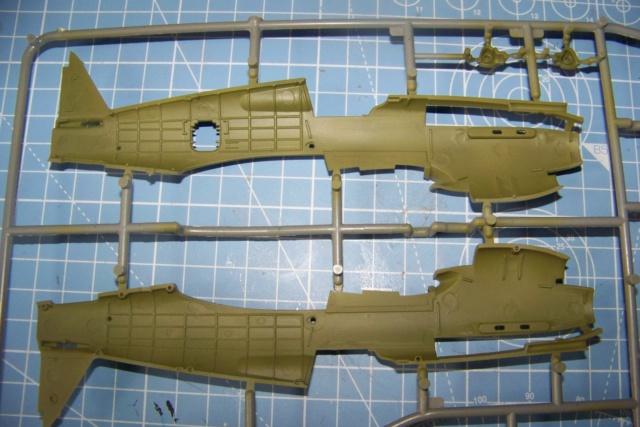 Curtiss H81A1(P40A)   Airfix 1/48 Fini 100_5051