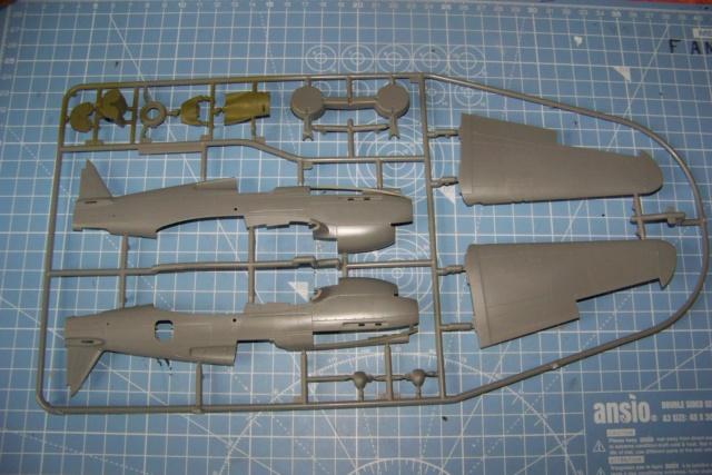 Curtiss H81A1(P40A)   Airfix 1/48 Fini 100_5053