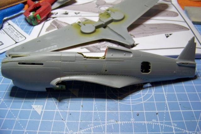 Curtiss H81A1(P40A)   Airfix 1/48 Fini 100_5115
