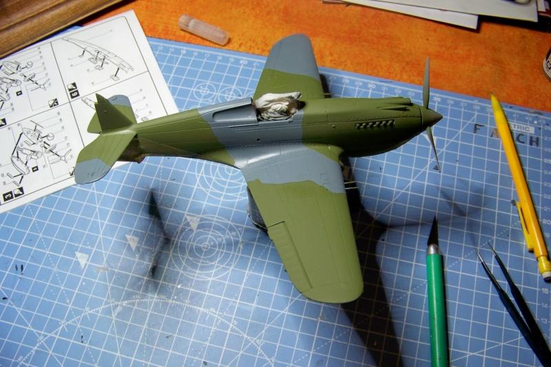 Curtiss H81A1(P40A)   Airfix 1/48 Fini - Page 2 100_5139