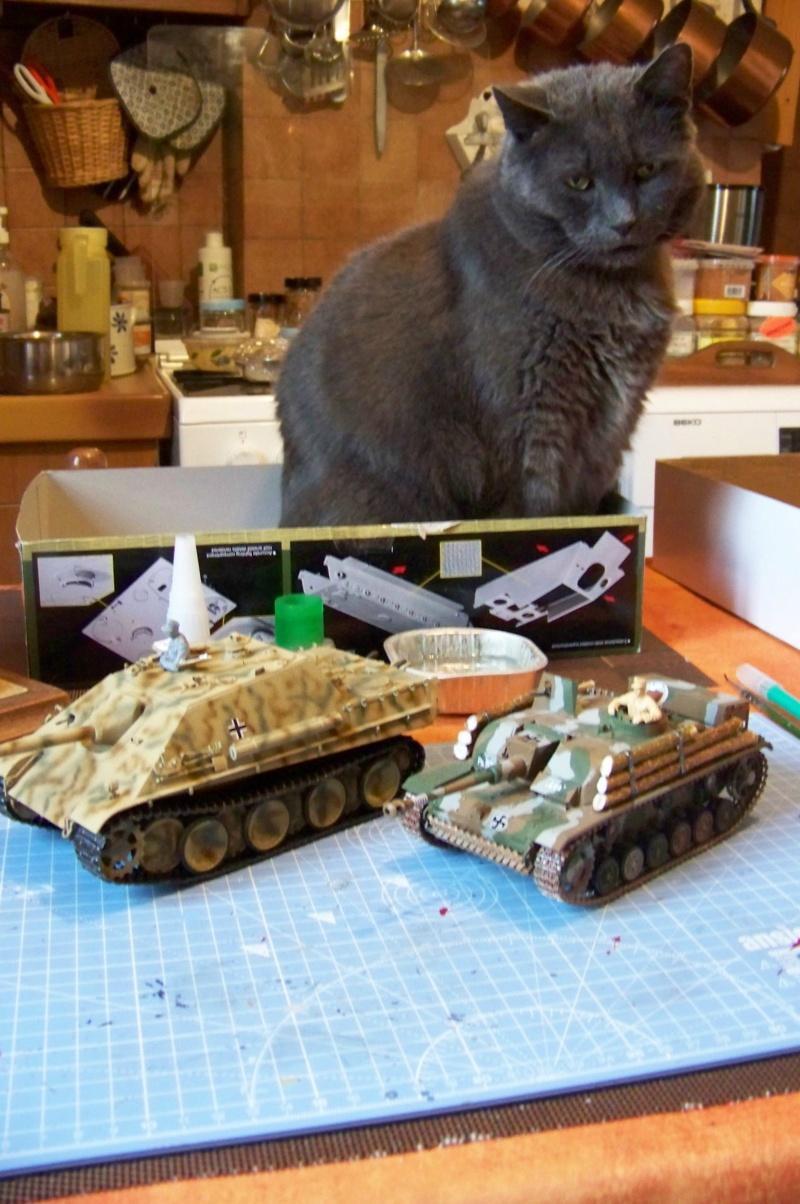 SdKfz 173:654th. Schwere Panzerjäger Abteilung   Normandie Juillet 1944 ( fertig ) 100_5353
