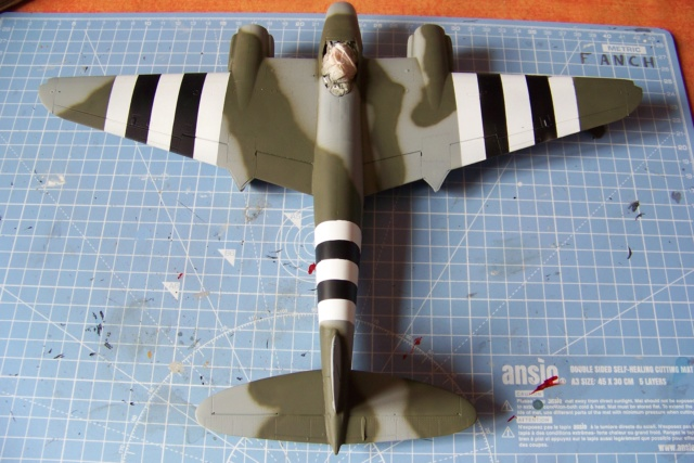 "DH 98 ""Mossie"" NF MK XIII 1/48  "" FINI ! "" - Page 2 100_5670"