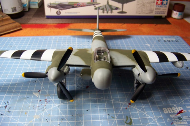 "DH 98 ""Mossie"" NF MK XIII 1/48  "" FINI ! "" - Page 2 100_5673"