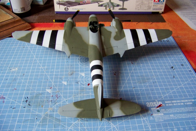 "DH 98 ""Mossie"" NF MK XIII 1/48  "" FINI ! "" - Page 2 100_5679"