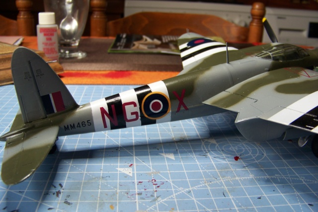 "DH 98 ""Mossie"" NF MK XIII 1/48  "" FINI ! "" - Page 2 100_5685"