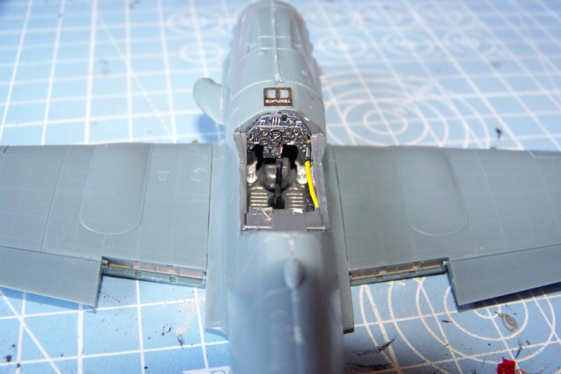 Me 109 G10 Eduard 1/48 (Fini) 100_6244