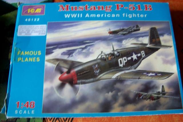 P-51D5 ICM 1/48  Lieutenant Charles H. SIMONSON, 356 FSq / 354 FGr (2013)FINI 100_7187