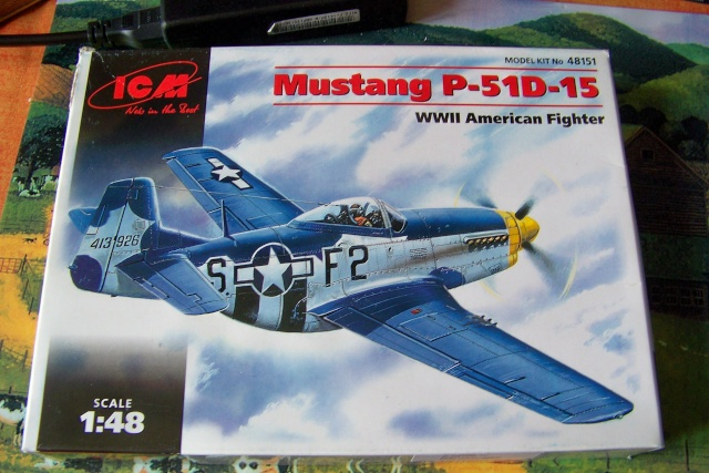 P-51D5 ICM 1/48  Lieutenant Charles H. SIMONSON, 356 FSq / 354 FGr (2013)FINI 100_7188