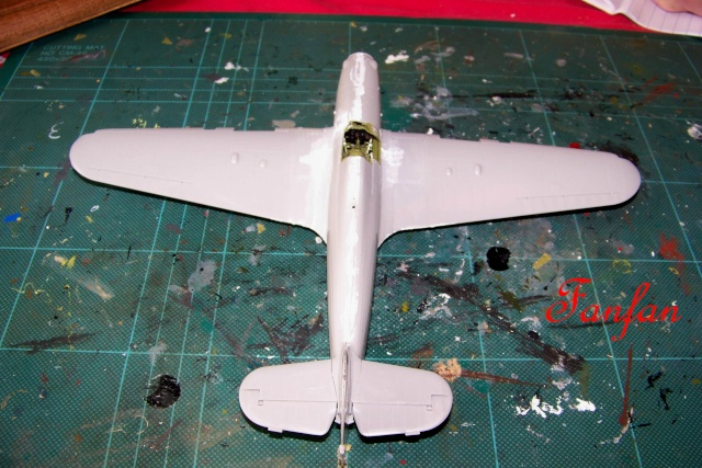 Hawker Hurricane MKIIc Hasegawa 1/48( Nov 2013 Fini)  100_7294