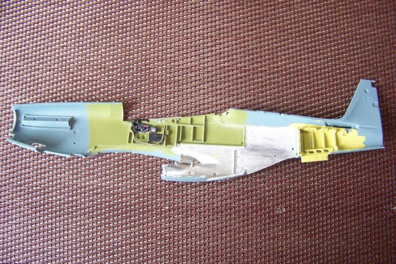 """"""" Frenesi """" P-51D5 ( Eduard 1/48) Fini 100_7587"""