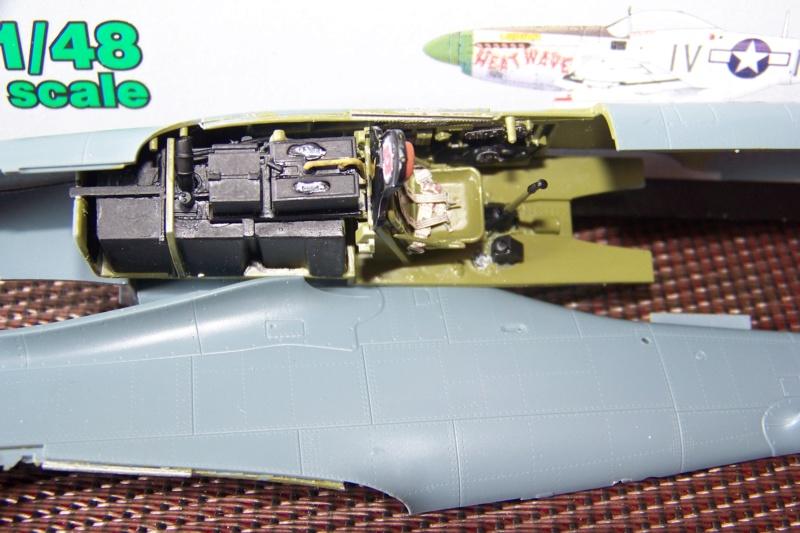 """"""" Frenesi """" P-51D5 ( Eduard 1/48) Fini 100_7590"""