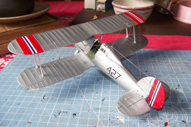 "Fil rouge 2020 : Gloster Gladiator MKI .Jagevingen (Merit 1/48) "" Ferdig "" Fini - Page 5 100_7612"