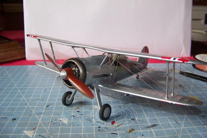 "Fil rouge 2020 : Gloster Gladiator MKI .Jagevingen (Merit 1/48) "" Ferdig "" Fini - Page 5 100_7614"