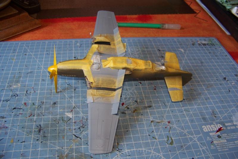 """ Frenesi "" P-51D5 ( Eduard 1/48) Fini - Page 3 100_8035"