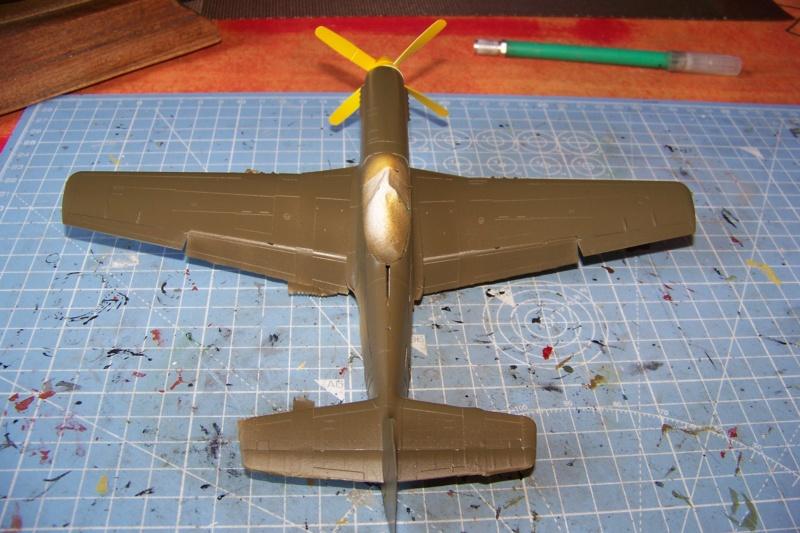 """ Frenesi "" P-51D5 ( Eduard 1/48) Fini - Page 3 100_8036"