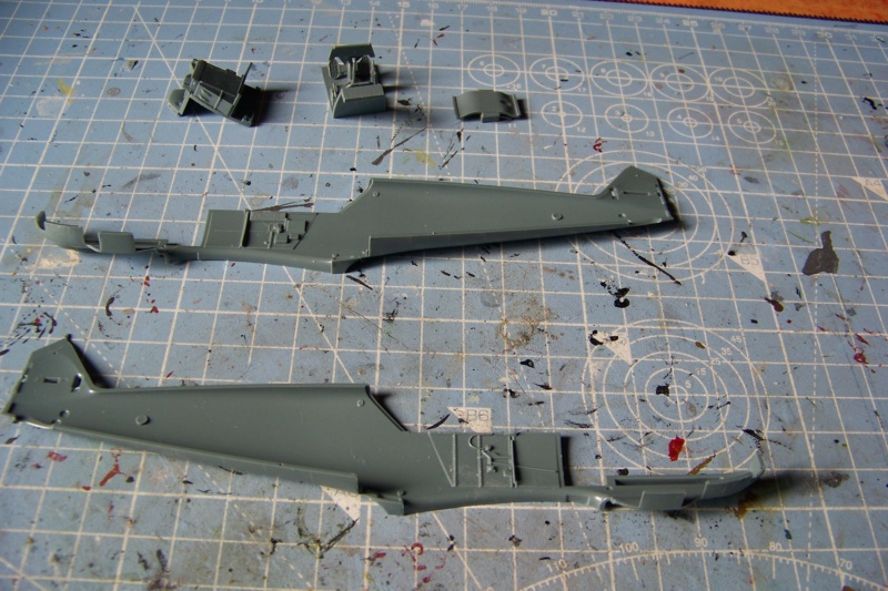 sur l' établi Bf 109 E3a 1/48 Eduard  Fini 100_8229
